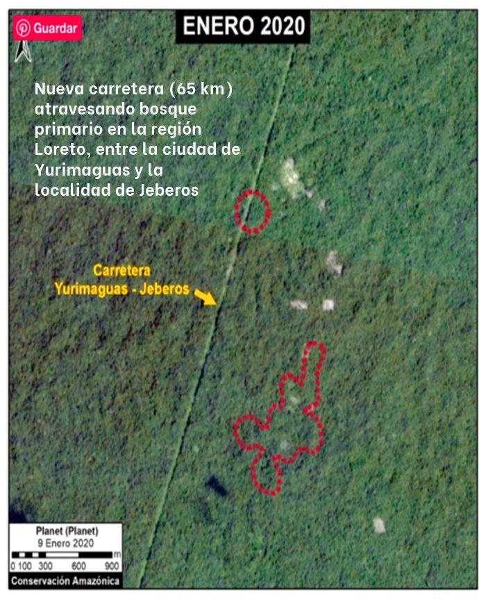 deforestacion A