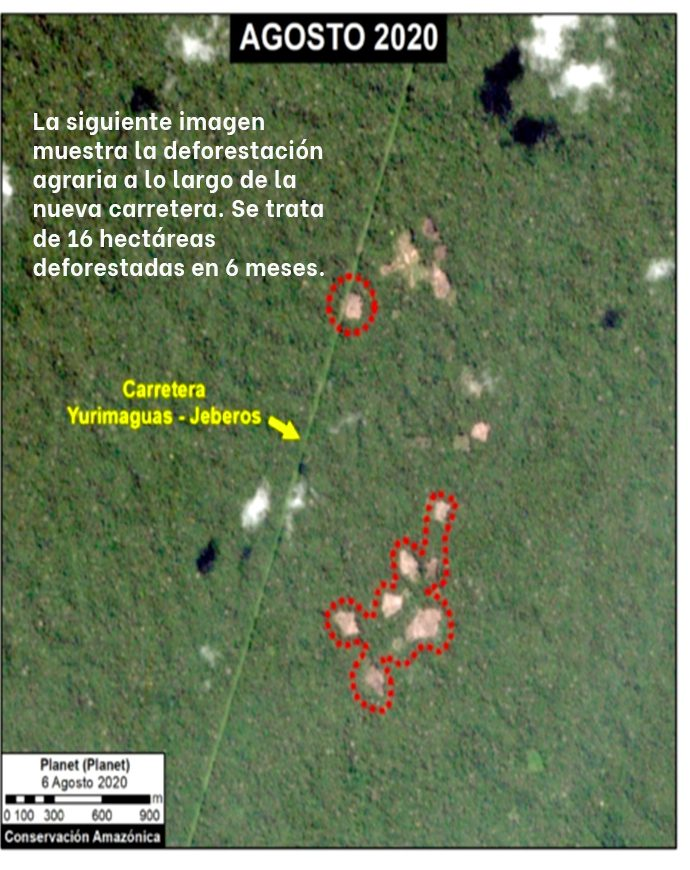 deforestacionB