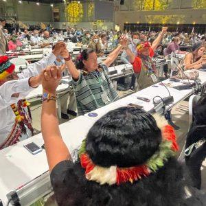 Gran logro con el resultado positivo a la moción 80 -25 de COICA en la UICN